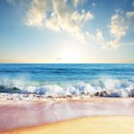 Draag gratis bij aan het verschonen van de oceaan